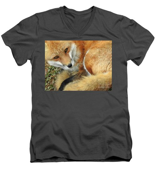 Soulful Eyes Men's V-Neck T-Shirt