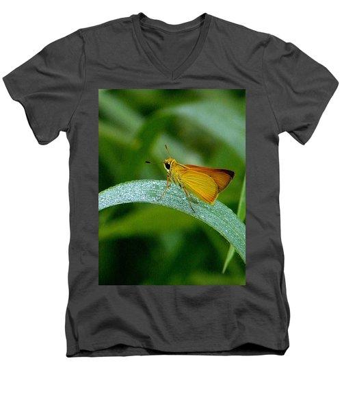 Southern Skipperling Butterfly  000 Men's V-Neck T-Shirt by Chris Mercer