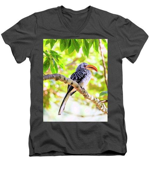 Southern Yellow Billed Hornbill Men's V-Neck T-Shirt by Alexey Stiop