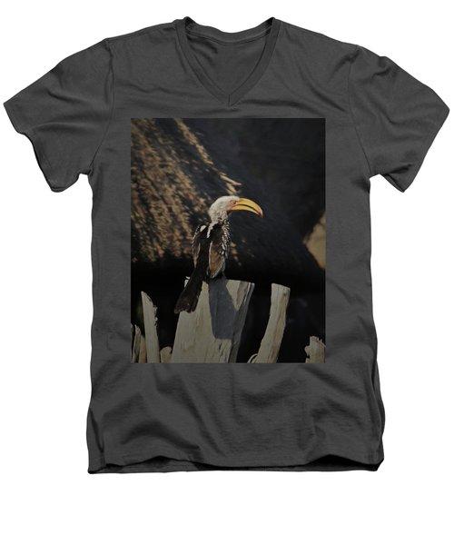 Southern Yellow Billed Hornbill Men's V-Neck T-Shirt by Ernie Echols