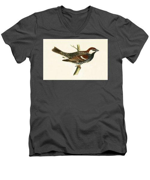 Spanish Sparrow Men's V-Neck T-Shirt by English School