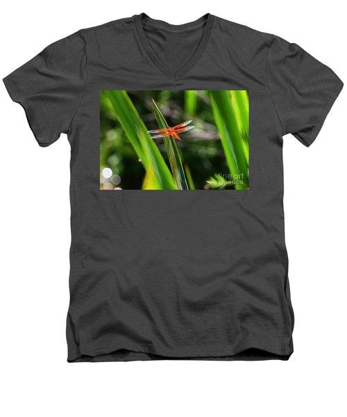 Sparkling Red Dragonfly Men's V-Neck T-Shirt