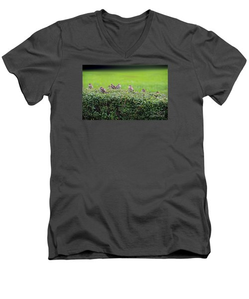 Men's V-Neck T-Shirt featuring the photograph Sparrows Gathering Place  by Yumi Johnson