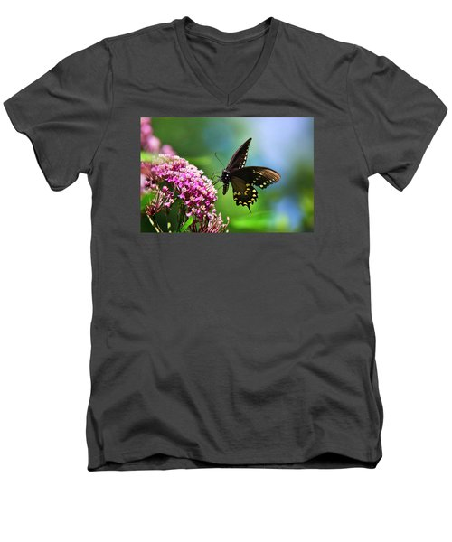 Spicebush Swallowtail Butterfly On Pink Flower Men's V-Neck T-Shirt
