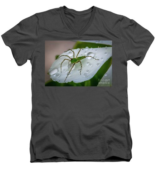 Spider And Flower Petal Men's V-Neck T-Shirt by Tom Claud