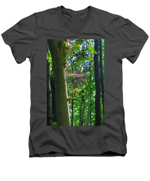 Spider Web In A Forest Men's V-Neck T-Shirt