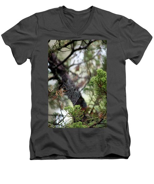 Spider Web In Tree Men's V-Neck T-Shirt