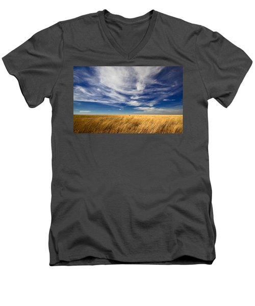 Splendid Isolation Men's V-Neck T-Shirt