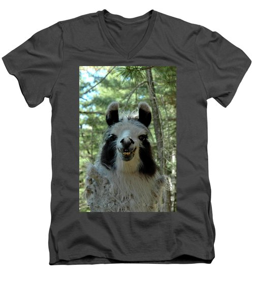 Men's V-Neck T-Shirt featuring the photograph Spooky Llama by LeeAnn McLaneGoetz McLaneGoetzStudioLLCcom