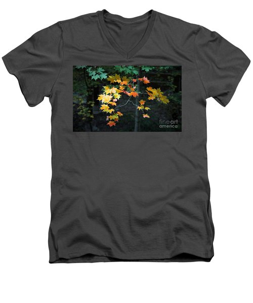 Spotlight On Fall Men's V-Neck T-Shirt