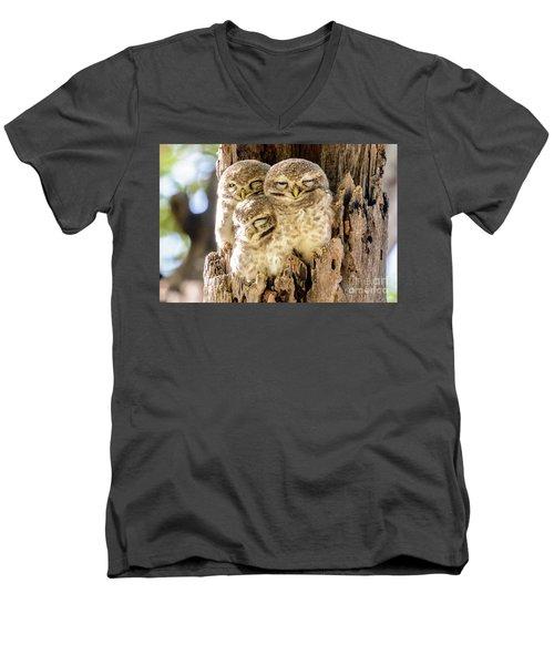 Spotted Owlets Men's V-Neck T-Shirt