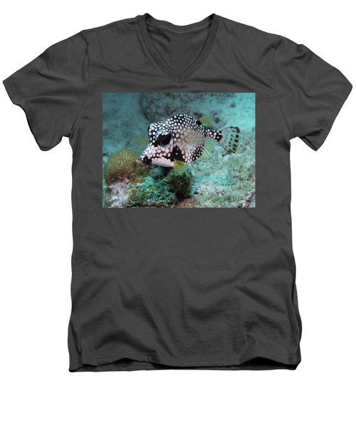 Men's V-Neck T-Shirt featuring the photograph Spotted Trunkfsh by Jean Noren