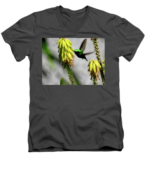 Spread Your Wings Men's V-Neck T-Shirt