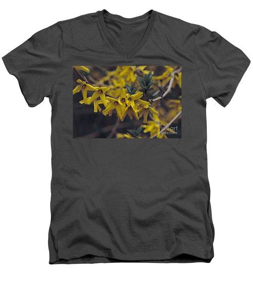 Spring 2016 8 Men's V-Neck T-Shirt by Cendrine Marrouat