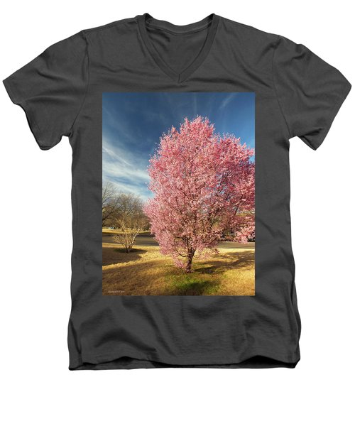 Spring 2017 Men's V-Neck T-Shirt