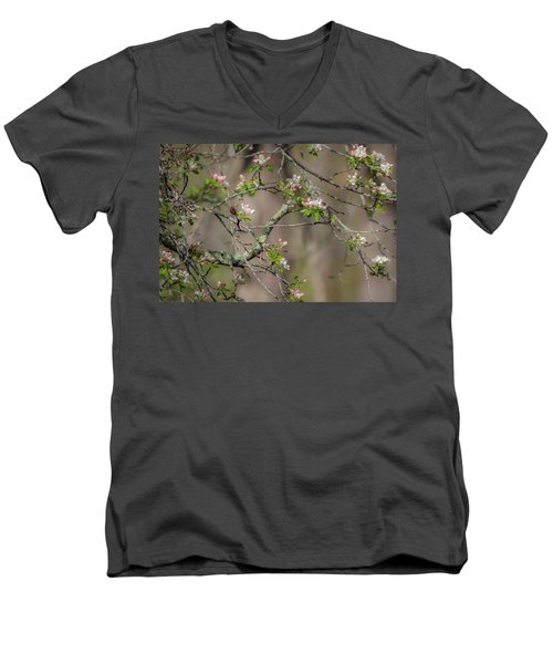 Spring Blossoms 2 Men's V-Neck T-Shirt