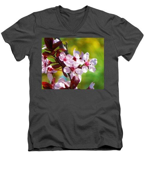 Spring Cheer Men's V-Neck T-Shirt