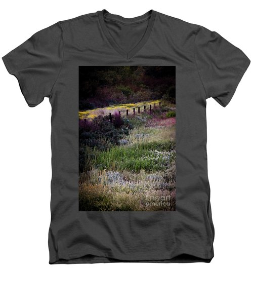 Spring Colors Men's V-Neck T-Shirt by Kelly Wade