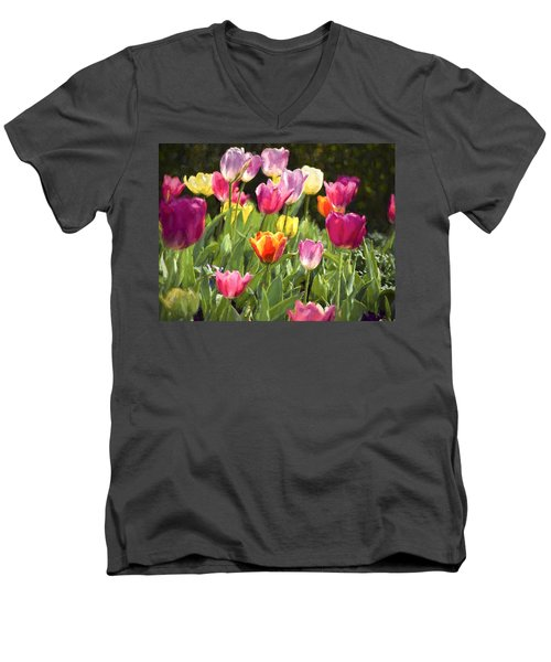 Spring Colors Men's V-Neck T-Shirt by Penny Lisowski
