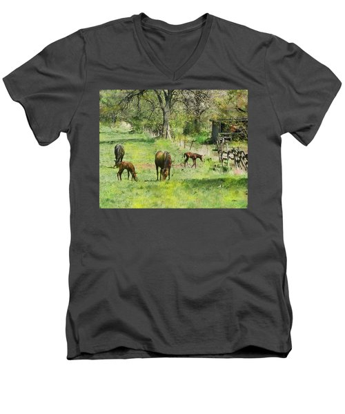 Spring Colts Men's V-Neck T-Shirt by John Robert Beck