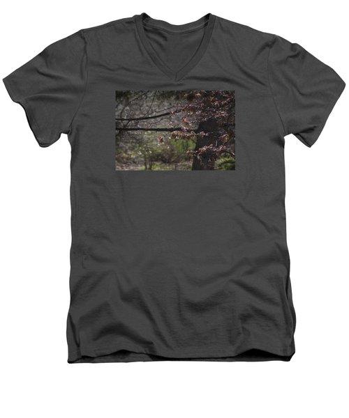 Spring Crabapple Men's V-Neck T-Shirt by Morris  McClung