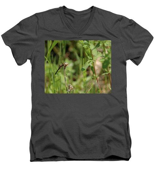Men's V-Neck T-Shirt featuring the photograph Spring Dragonfly by LeeAnn McLaneGoetz McLaneGoetzStudioLLCcom