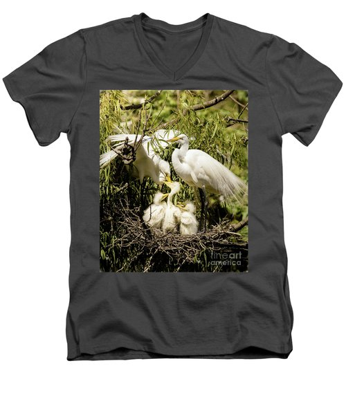 Men's V-Neck T-Shirt featuring the photograph Spring Egret Chicks by Robert Frederick