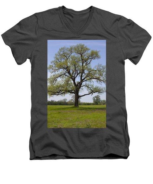 Spring Emerges Men's V-Neck T-Shirt
