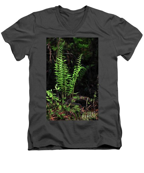 Men's V-Neck T-Shirt featuring the photograph Spring Ferns by Skip Willits