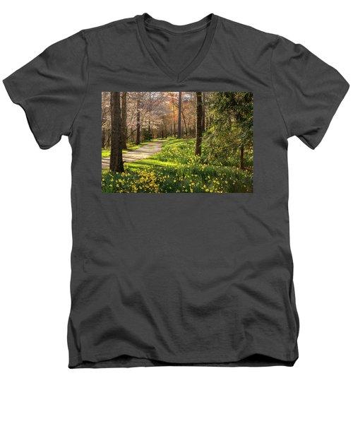 Spring Garden Path Men's V-Neck T-Shirt