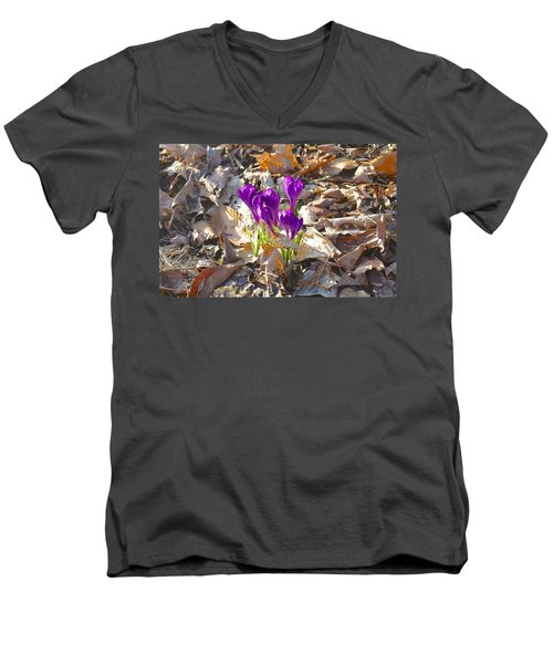 Spring Gathering Men's V-Neck T-Shirt