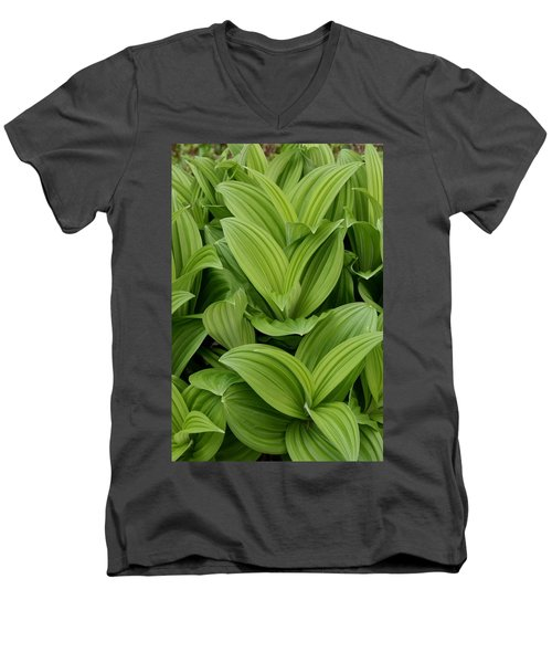 Spring Green Men's V-Neck T-Shirt