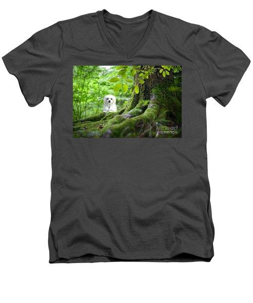 Spring Green Men's V-Neck T-Shirt