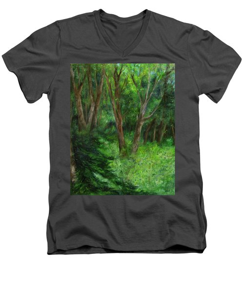 Spring In The Forest Men's V-Neck T-Shirt by FT McKinstry
