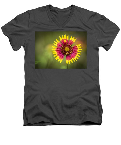 Spring Indian Blanket Men's V-Neck T-Shirt
