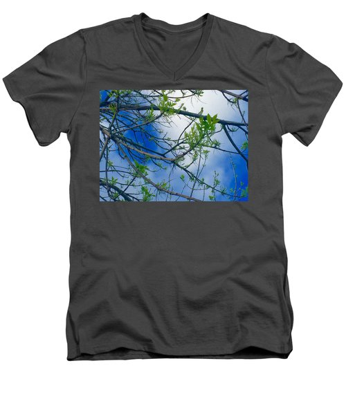 Spring Is In The Air Men's V-Neck T-Shirt