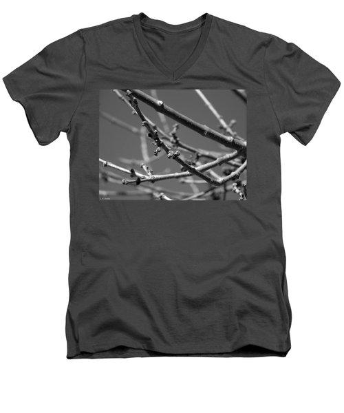 Spring Men's V-Neck T-Shirt