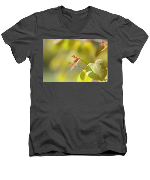 Men's V-Neck T-Shirt featuring the photograph Spring Macro2 by Jeff Burgess