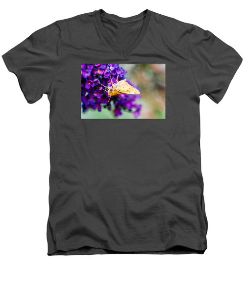 Spring Moth Men's V-Neck T-Shirt