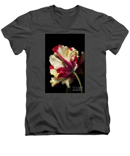 Spring Parrot Tulip Men's V-Neck T-Shirt