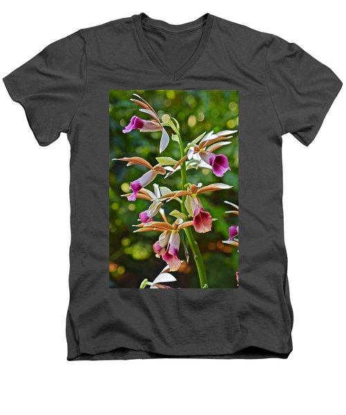 Spring Show 15 Nun's Orchid 1 Men's V-Neck T-Shirt
