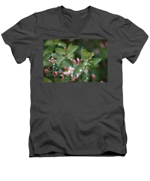 Spring Showers 5 Men's V-Neck T-Shirt