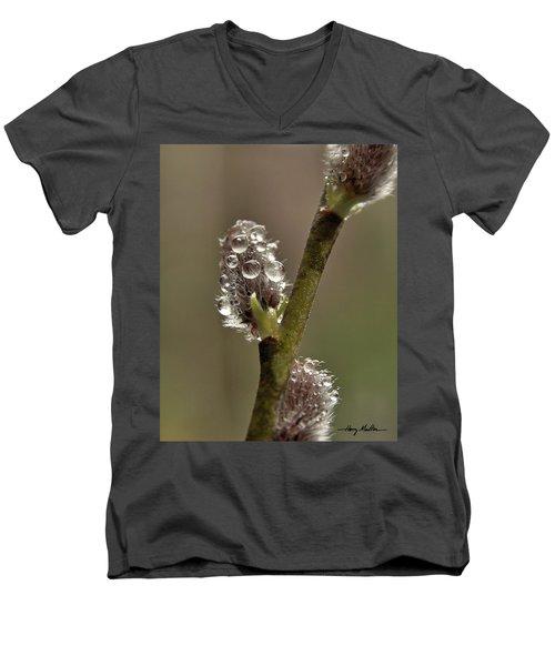 Spring Showers Men's V-Neck T-Shirt