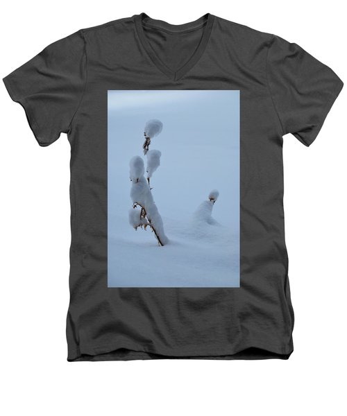 Spring Snow Men's V-Neck T-Shirt