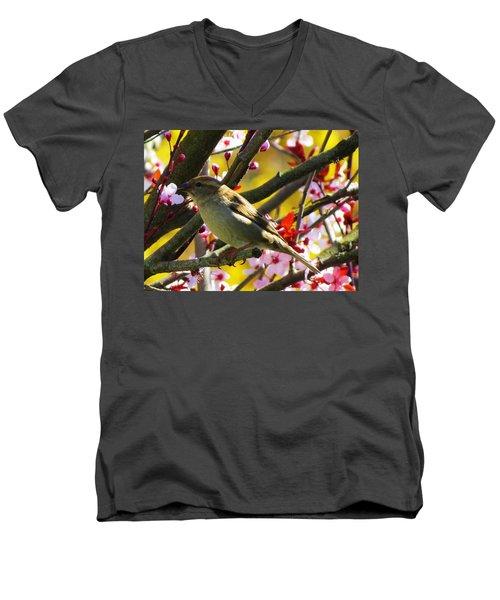 Spring Sparrow Men's V-Neck T-Shirt