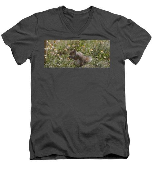 Spring Squirrel Men's V-Neck T-Shirt by Diane Giurco