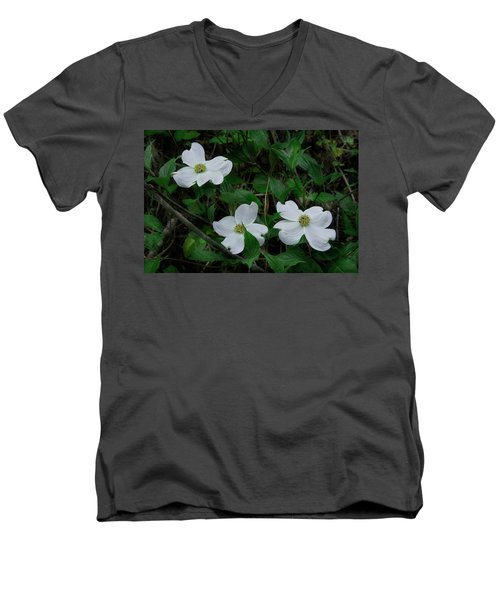 Men's V-Neck T-Shirt featuring the photograph Spring Time Dogwood by Mike Eingle