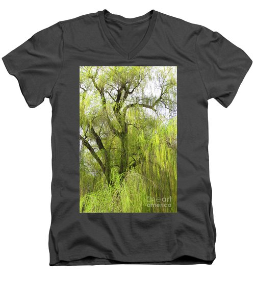 Spring Willow Men's V-Neck T-Shirt