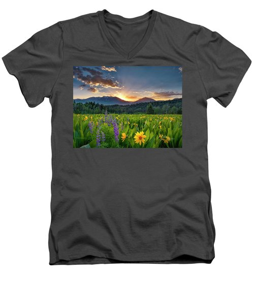 Spring's Delight Men's V-Neck T-Shirt