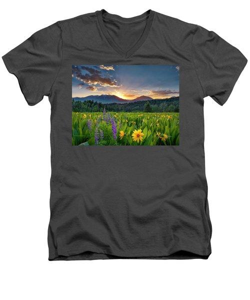 Spring's Delight Men's V-Neck T-Shirt